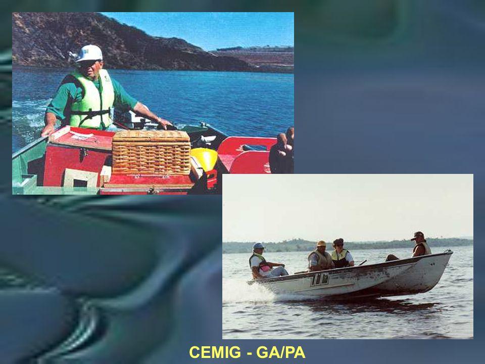 CEMIG - GA/PA