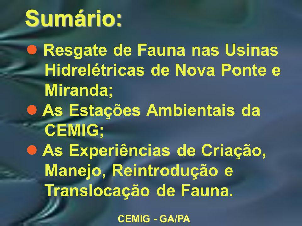 CEMIG - GA/PA Sumário: l Resgate de Fauna nas Usinas Hidrelétricas de Nova Ponte e Miranda; l As Estações Ambientais da CEMIG; l As Experiências de Criação, Manejo, Reintrodução e Translocação de Fauna.