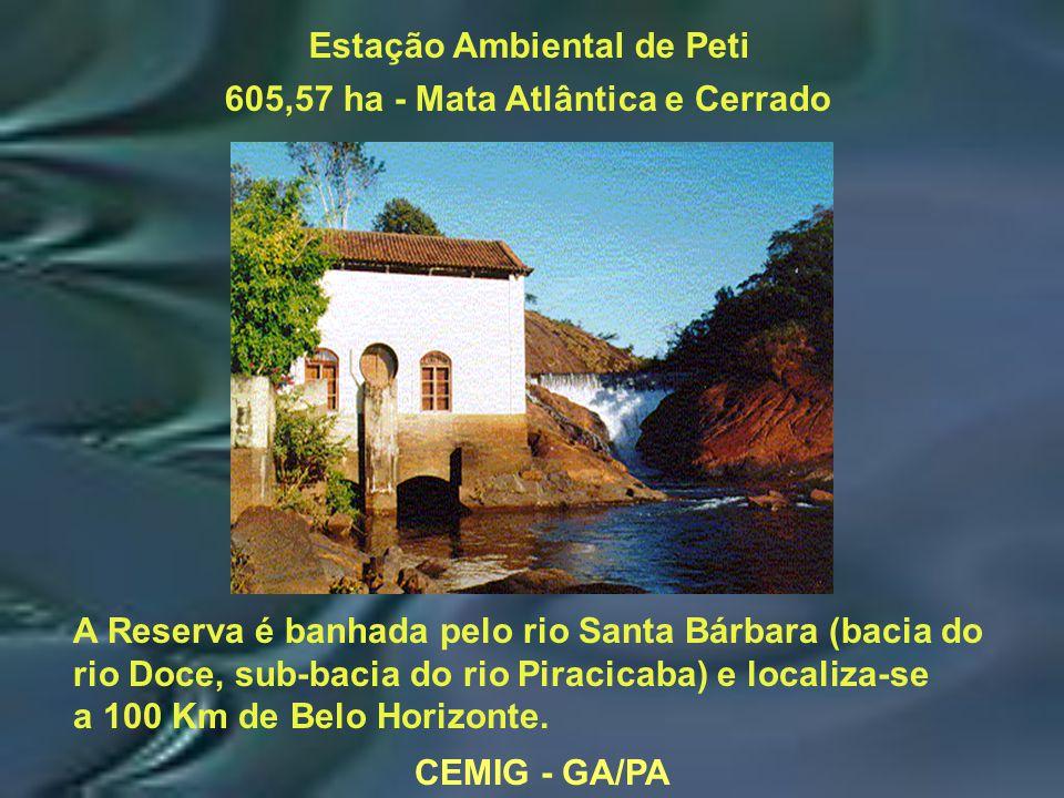 CEMIG - GA/PA Estação Ambiental de Peti 605,57 ha - Mata Atlântica e Cerrado A Reserva é banhada pelo rio Santa Bárbara (bacia do rio Doce, sub-bacia do rio Piracicaba) e localiza-se a 100 Km de Belo Horizonte.