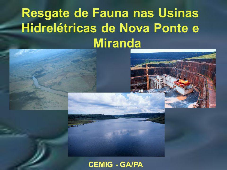 CEMIG - GA/PA Resgate de Fauna nas Usinas Hidrelétricas de Nova Ponte e Miranda