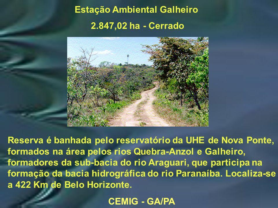 CEMIG - GA/PA Estação Ambiental Galheiro 2.847,02 ha - Cerrado Reserva é banhada pelo reservatório da UHE de Nova Ponte, formados na área pelos rios Quebra-Anzol e Galheiro, formadores da sub-bacia do rio Araguari, que participa na formação da bacia hidrográfica do rio Paranaíba.