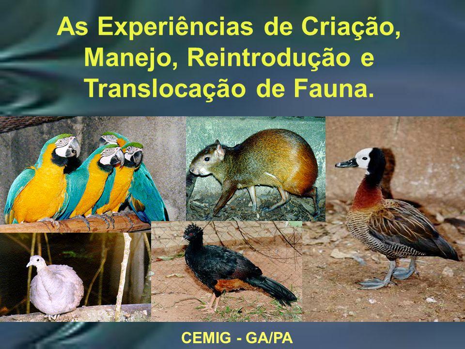 CEMIG - GA/PA As Experiências de Criação, Manejo, Reintrodução e Translocação de Fauna.