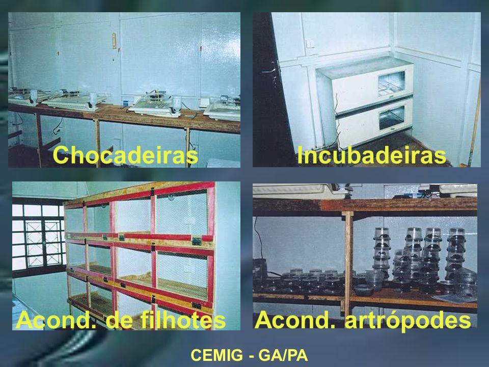 CEMIG - GA/PA ChocadeirasIncubadeiras Acond. de filhotesAcond. artrópodes
