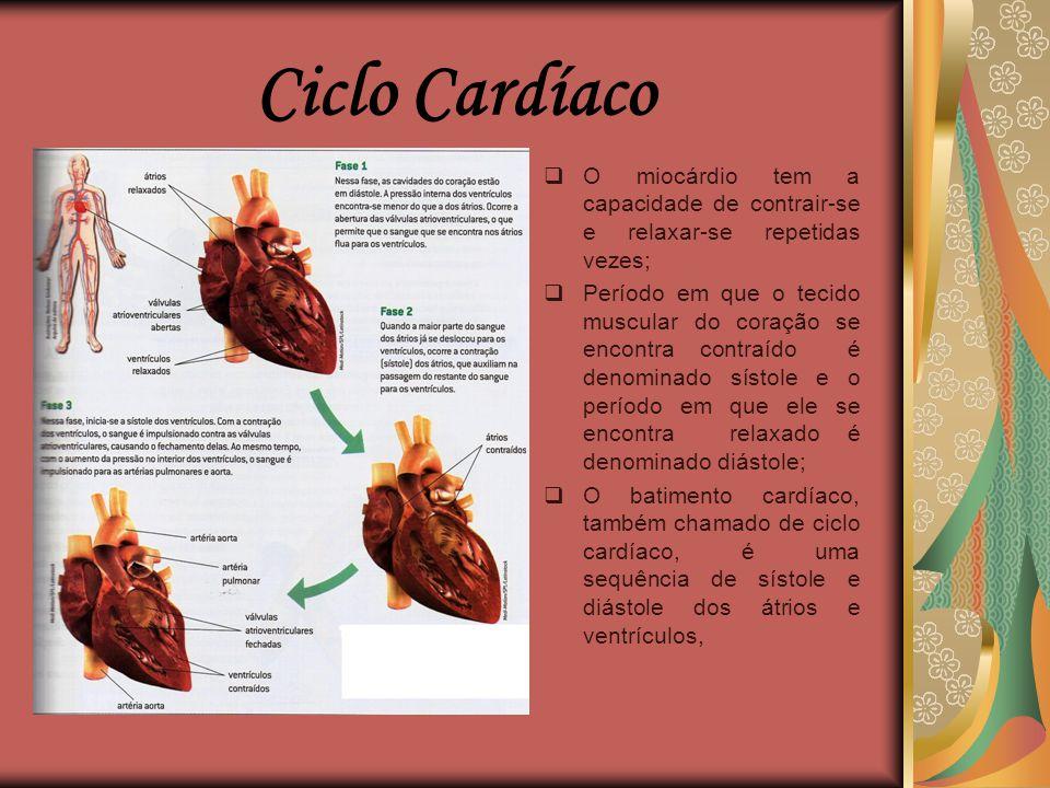  Órgão muscular oco que funciona como uma bomba, impulsionando o sangue;  Localizado na região torácica, entre os dois pulmões;  A principal função