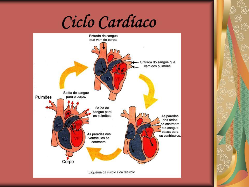 Ciclo Cardíaco  O miocárdio tem a capacidade de contrair-se e relaxar-se repetidas vezes;  Período em que o tecido muscular do coração se encontra c