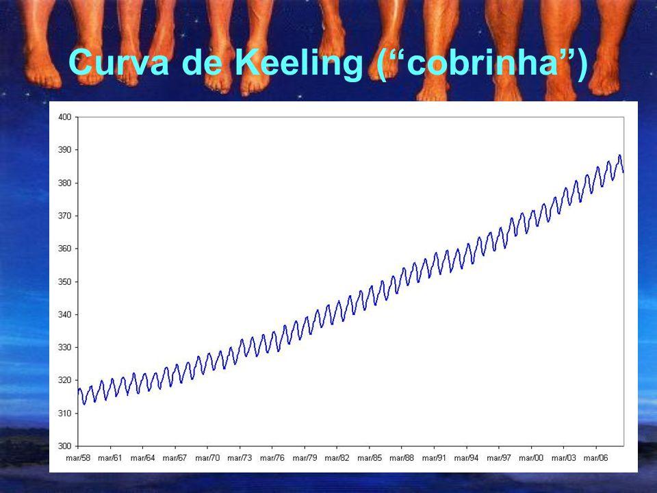 """A elevação das temperaturas (""""T-rex"""") IPCC (2007)"""