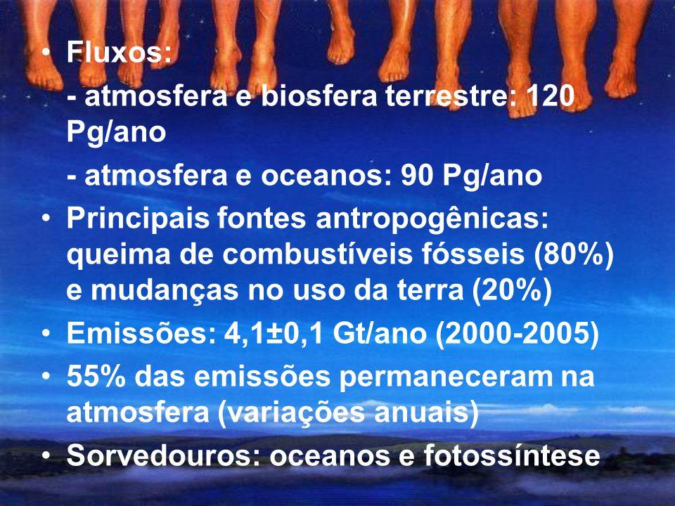 Causas terrestres Alterações na concentração de gases Dióxido de carbono (CO 2 ) Concentrações pré-industriais: 260-280 ppm Concentrações atuais: 379