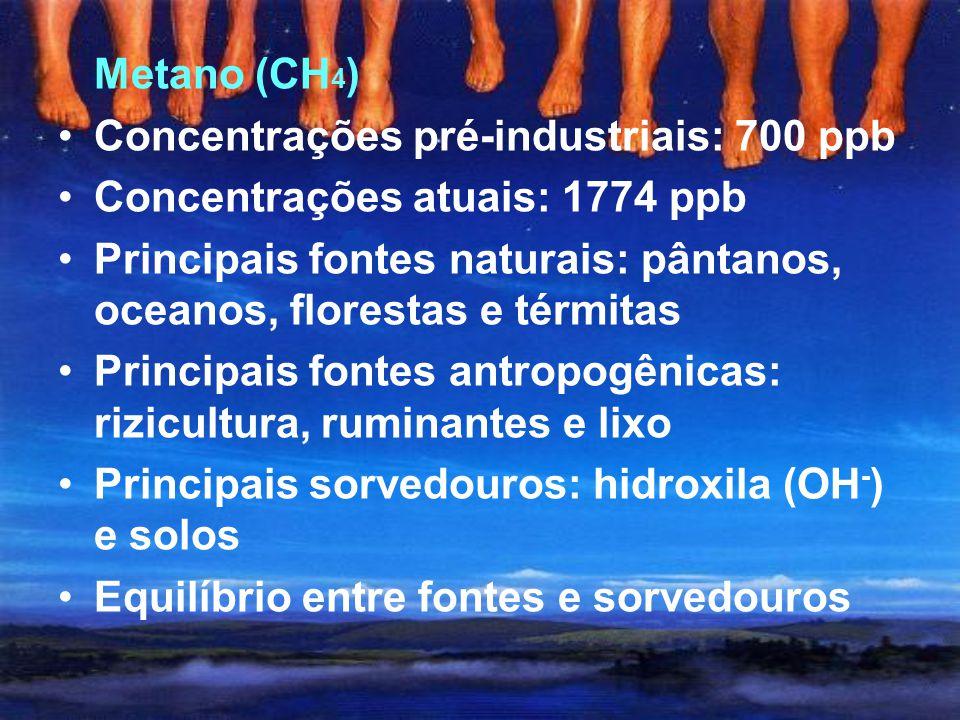 Fluxos: - atmosfera e biosfera terrestre: 120 Pg/ano - atmosfera e oceanos: 90 Pg/ano Principais fontes antropogênicas: queima de combustíveis fósseis
