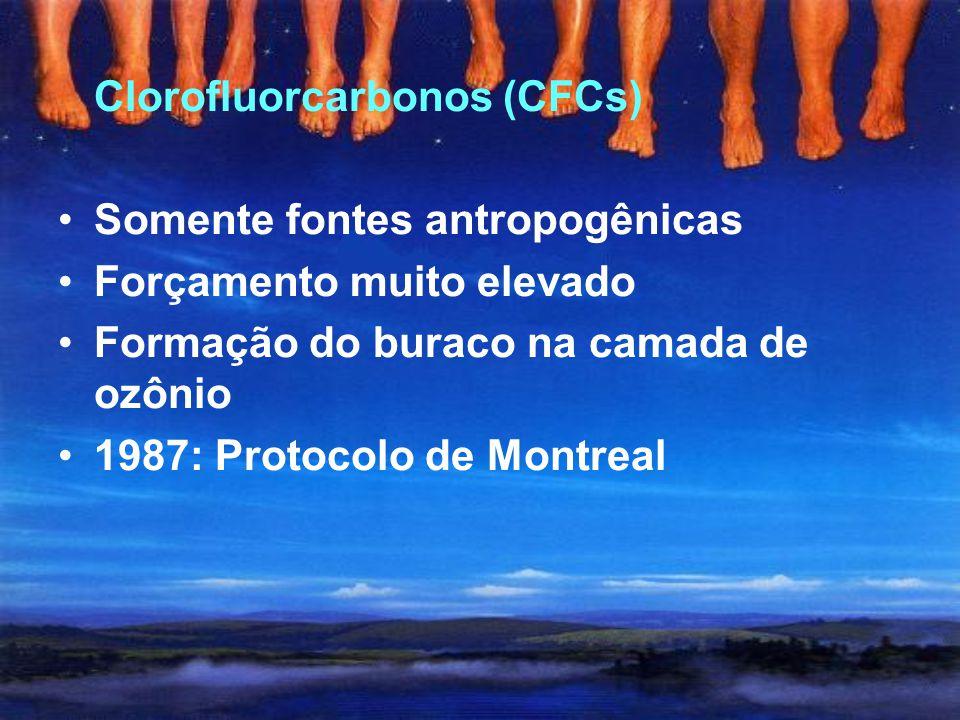 Óxido nitroso (N 2 O) Concentrações pré-industriais: 270 ppb Concentrações atuais: 319 ppb Principais fontes naturais: oceanos e solos florestais Prin