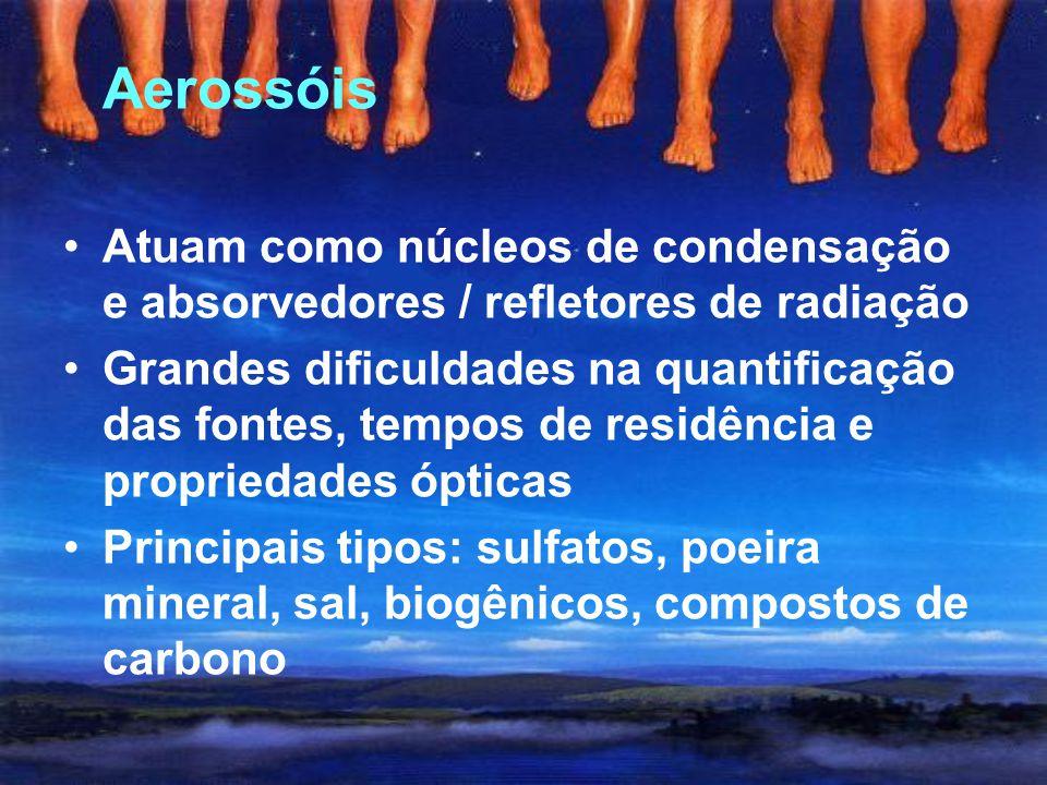 Clorofluorcarbonos (CFCs) Somente fontes antropogênicas Forçamento muito elevado Formação do buraco na camada de ozônio 1987: Protocolo de Montreal