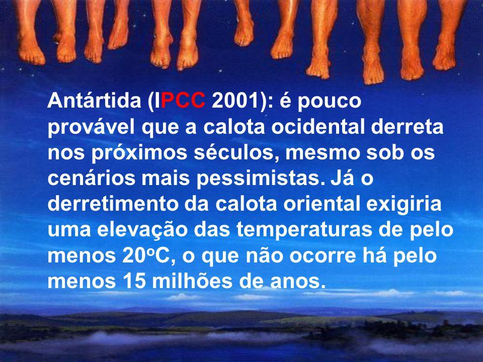 Atraso na resposta do gelo (até séculos!!) O número ínfimo de geleiras monitoradas Concentração dos estudos em montanhas menores e mais simples Variab