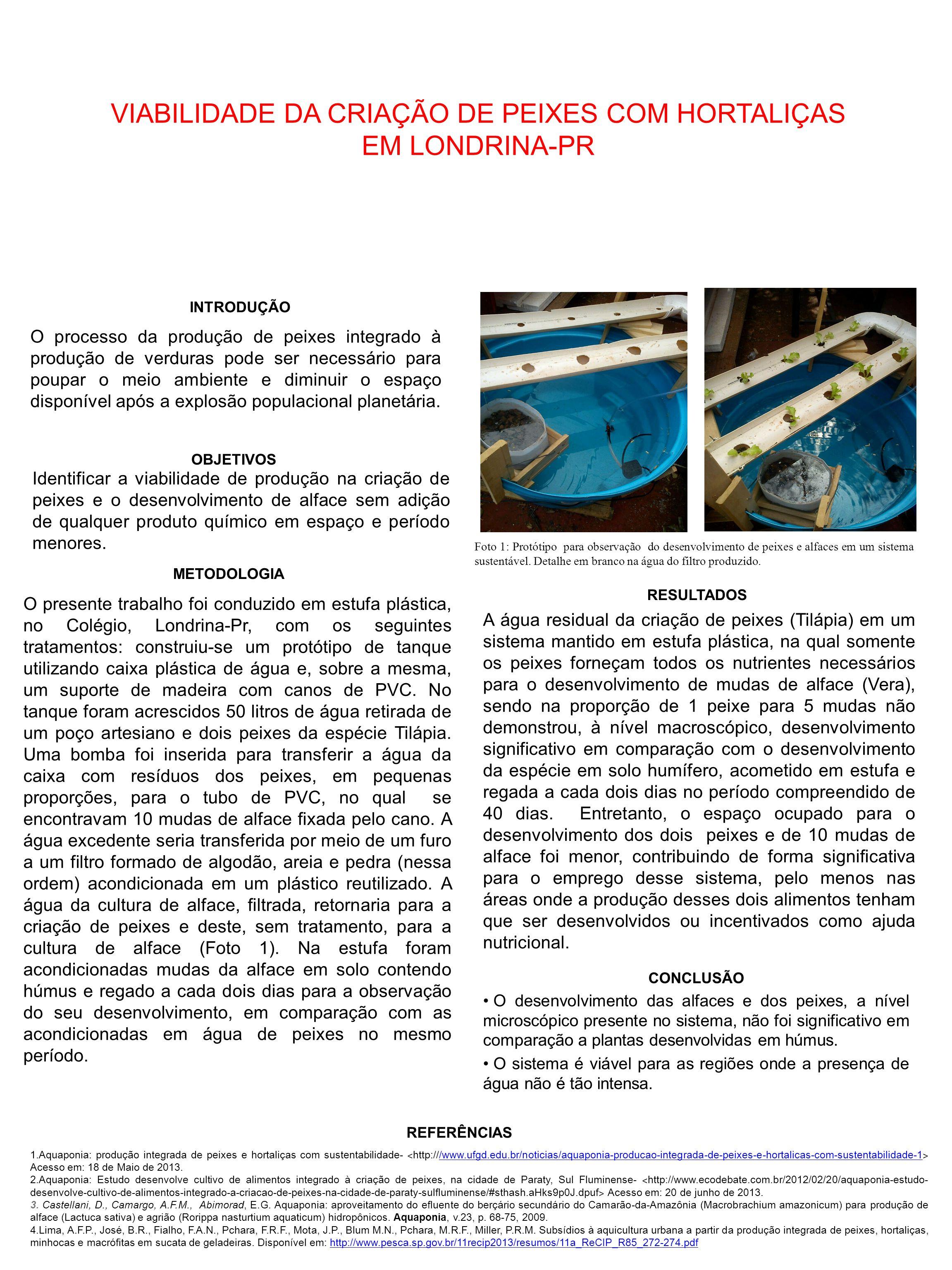 INTRODUÇÃO REFERÊNCIAS OBJETIVOS RESULTADOS METODOLOGIA CONCLUSÃO O desenvolvimento das alfaces e dos peixes, a nível microscópico presente no sistema