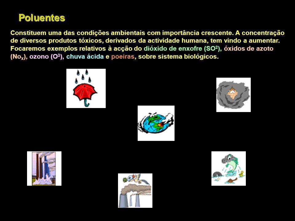 Emissão e Deposição de Poluentes Atmosféricos Lavagem no int.