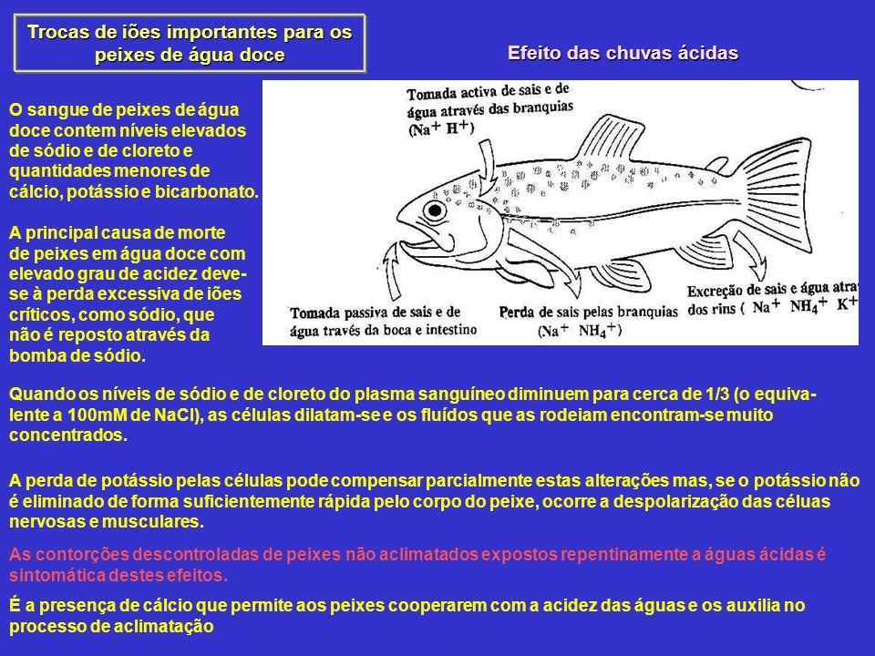 Trocas de iões importantes para os peixes de água doce O sangue de peixes de água doce contem níveis elevados de sódio e de cloreto e quantidades menores de cálcio, potássio e bicarbonato.