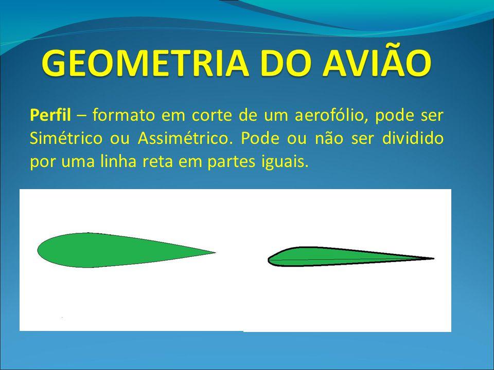 Perfil – formato em corte de um aerofólio, pode ser Simétrico ou Assimétrico. Pode ou não ser dividido por uma linha reta em partes iguais.