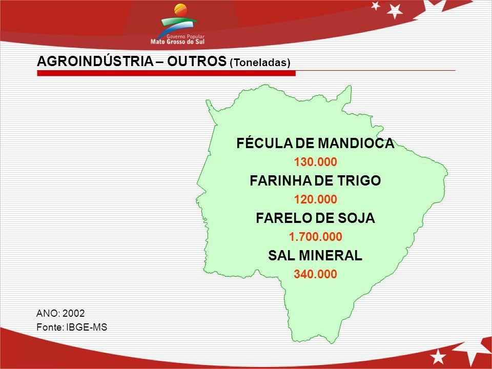 FÉCULA DE MANDIOCA 130.000 FARINHA DE TRIGO 120.000 FARELO DE SOJA 1.700.000 SAL MINERAL 340.000 AGROINDÚSTRIA – OUTROS (Toneladas) ANO: 2002 Fonte: I
