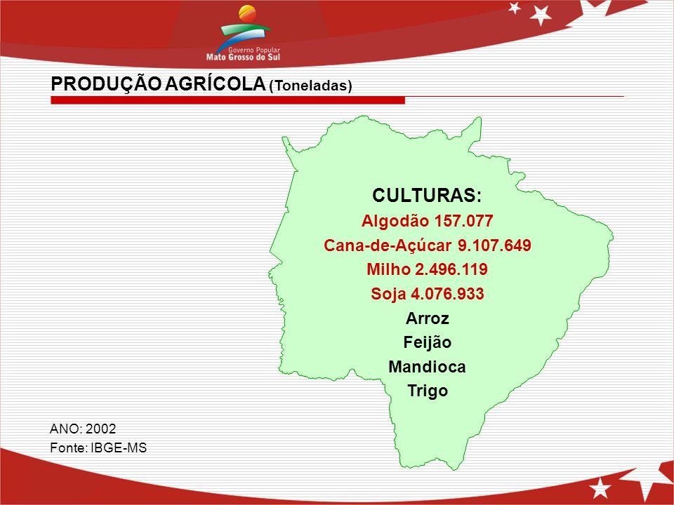 CULTURAS: Algodão 157.077 Cana-de-Açúcar 9.107.649 Milho 2.496.119 Soja 4.076.933 Arroz Feijão Mandioca Trigo ANO: 2002 Fonte: IBGE-MS PRODUÇÃO AGRÍCO