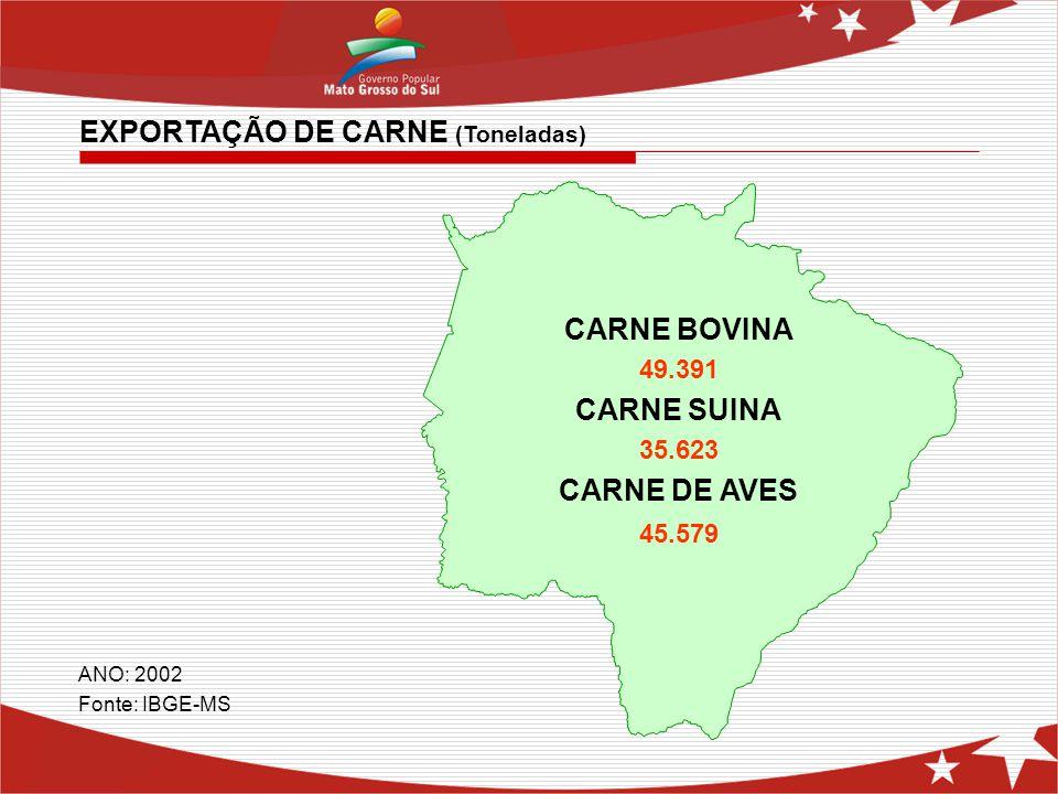EXPORTAÇÃO DE CARNE (Toneladas) ANO: 2002 Fonte: IBGE-MS CARNE BOVINA 49.391 CARNE SUINA 35.623 CARNE DE AVES 45.579