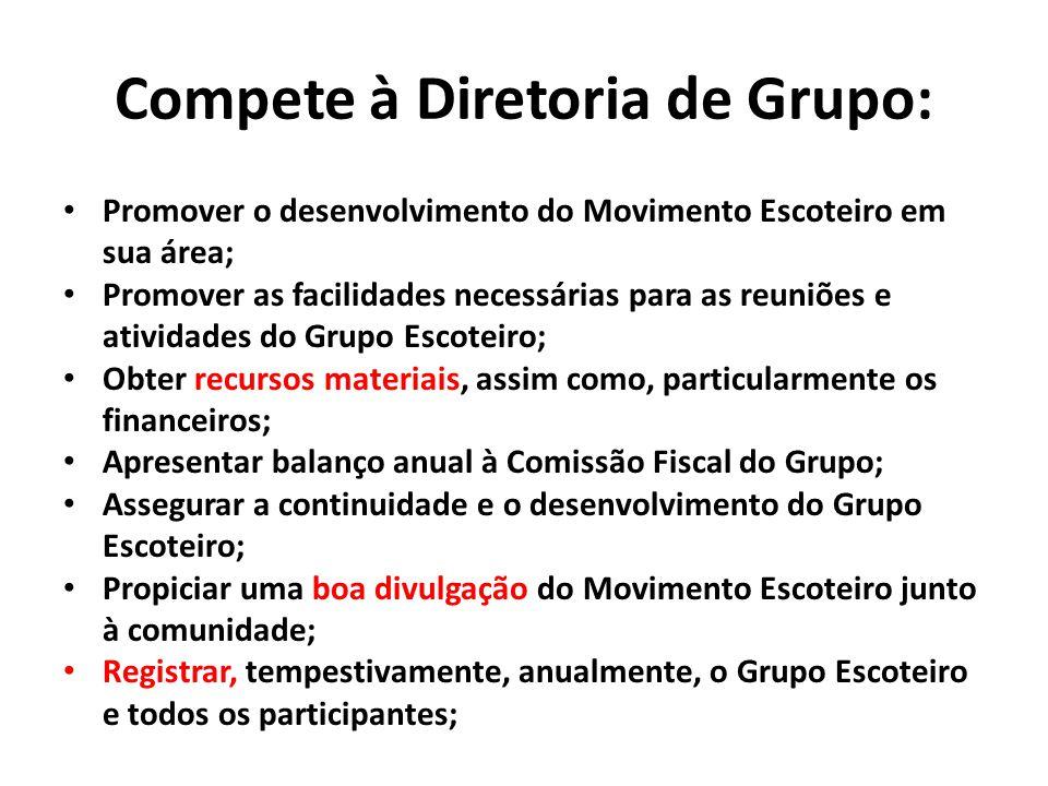 Compete à Diretoria de Grupo: Promover o desenvolvimento do Movimento Escoteiro em sua área; Promover as facilidades necessárias para as reuniões e at