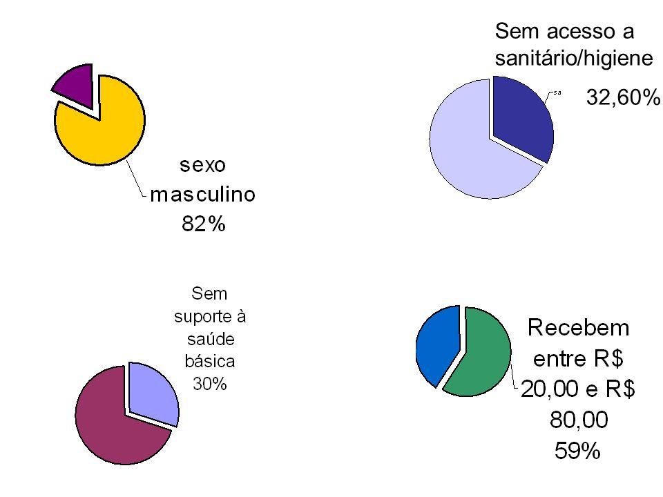 Sem acesso a sanitário/higiene 32,60%