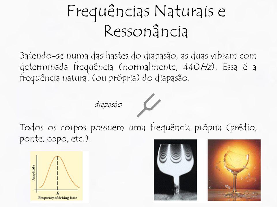 Batendo-se numa das hastes do diapasão, as duas vibram com determinada frequência (normalmente, 440Hz). Essa é a frequência natural (ou própria) do di
