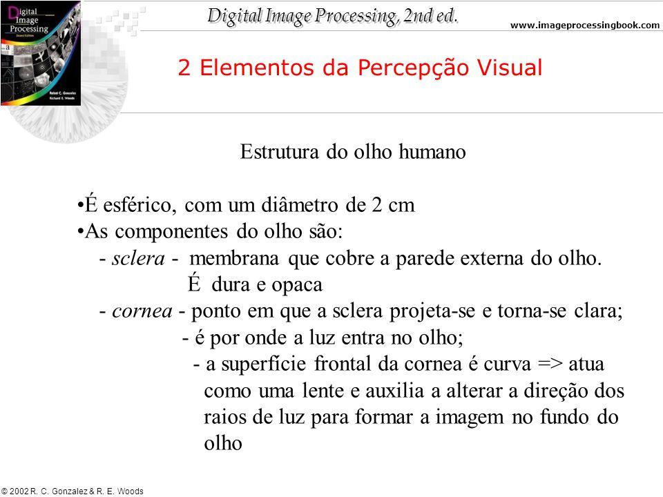 Digital Image Processing, 2nd ed. www.imageprocessingbook.com © 2002 R. C. Gonzalez & R. E. Woods Estrutura do olho humano É esférico, com um diâmetro