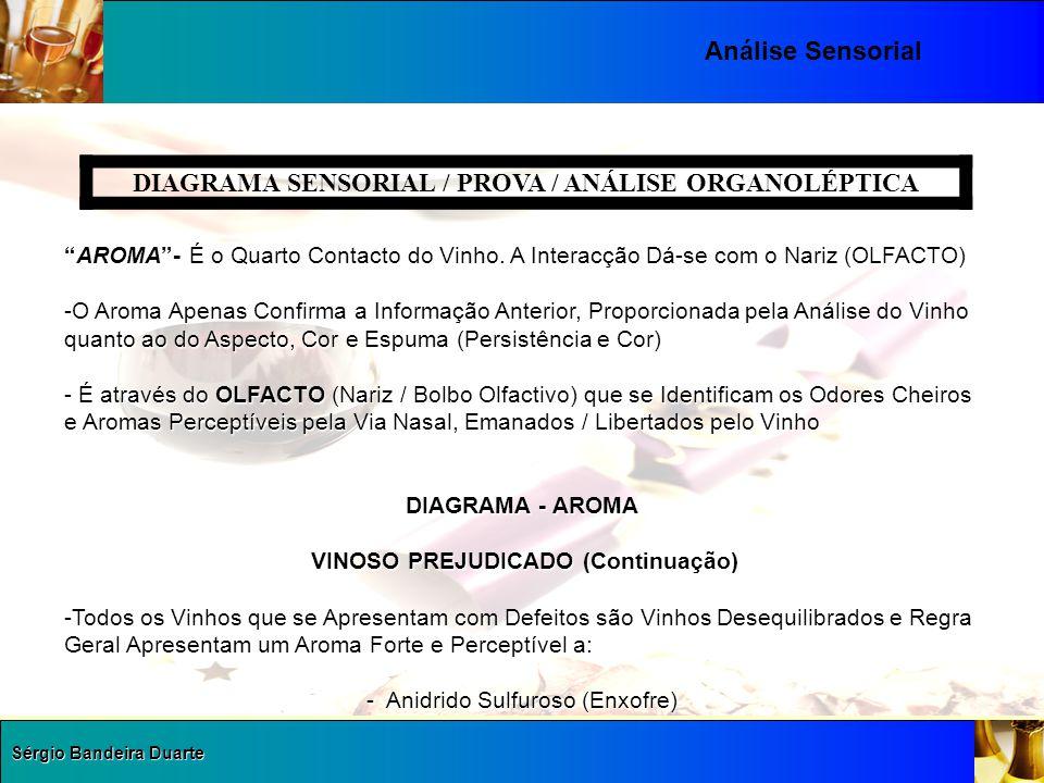 """Sérgio Bandeira Duarte Análise Sensorial DIAGRAMA SENSORIAL / PROVA / ANÁLISE ORGANOLÉPTICA """"AROMA""""- É o Quarto Contacto do Vinho. A Interacção Dá-se"""