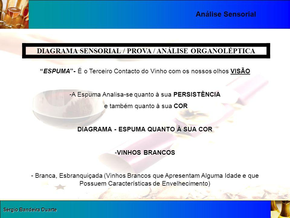 """Sérgio Bandeira Duarte Análise Sensorial DIAGRAMA SENSORIAL / PROVA / ANÁLISE ORGANOLÉPTICA """"ESPUMA""""- É o Terceiro Contacto do Vinho com os nossos olh"""
