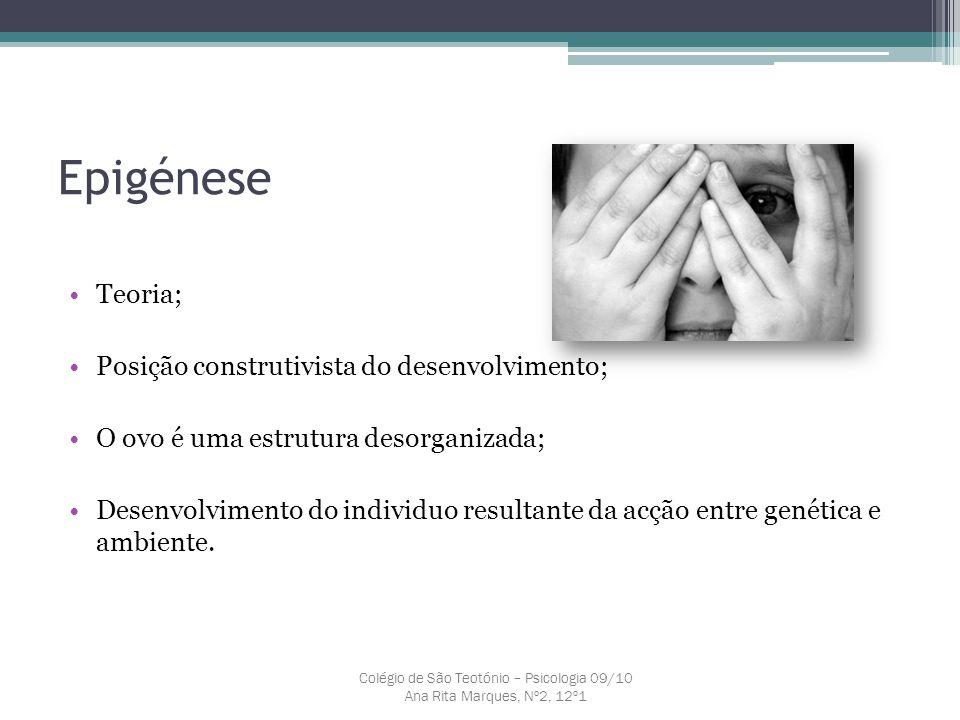 Epigénese Teoria; Posição construtivista do desenvolvimento; O ovo é uma estrutura desorganizada; Desenvolvimento do individuo resultante da acção ent
