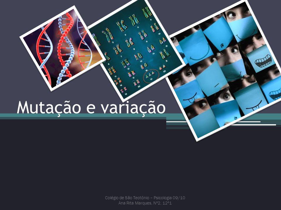 Mutação e variação Colégio de São Teotónio – Psicologia 09/10 Ana Rita Marques, Nº2, 12º1