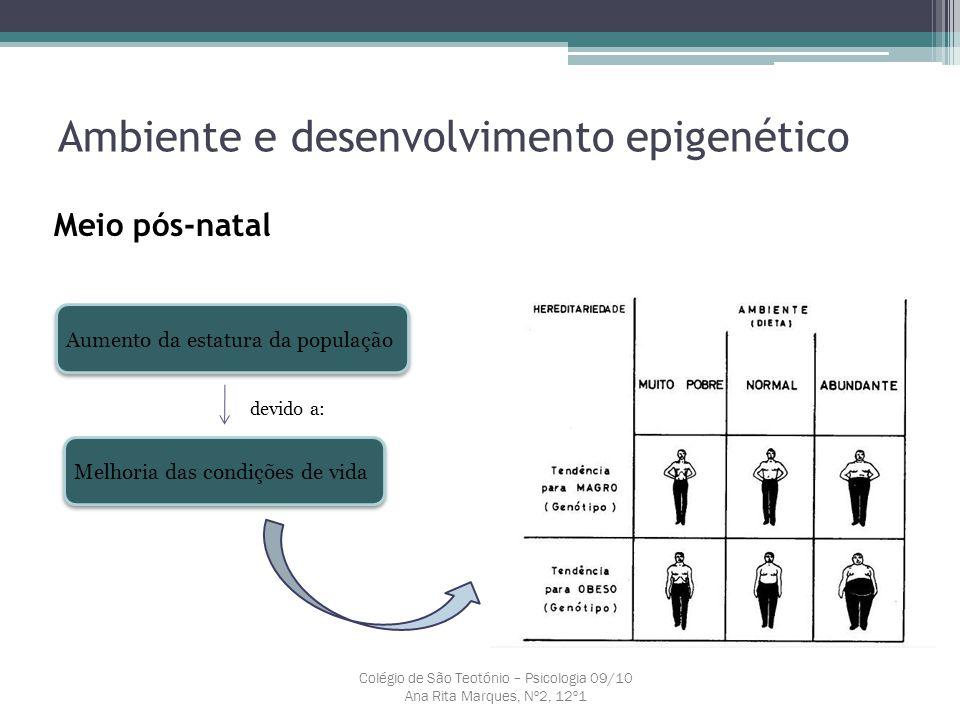 Ambiente e desenvolvimento epigenético Meio pós-natal Colégio de São Teotónio – Psicologia 09/10 Ana Rita Marques, Nº2, 12º1 Aumento da estatura da po