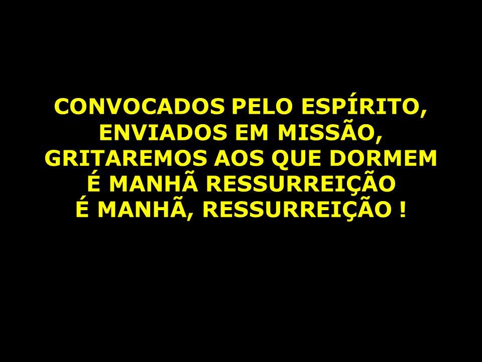 O MILAGRE DA PARTILHA É A FESTA EM EMAÚS, ACOLHENDO O PEREGRINO ACOLHERAM A JESUS AO REDOR DA MESA JUNTOS NA FRATERNA REFEIÇÃO, REPARTINDO O PÃO E A VIDA NOSSOS OLHOS SE ABRIRÃO AO CLARÃO DE NOVA AURORA, PLANTAREMOS NESTE CHÃO A SEMENTE DA IGUALDADE E DA VIDA EM COMUNHÃO