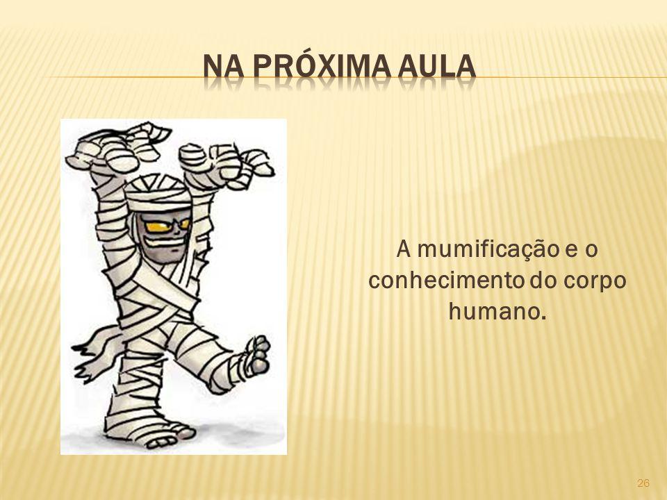 A mumificação e o conhecimento do corpo humano. 26