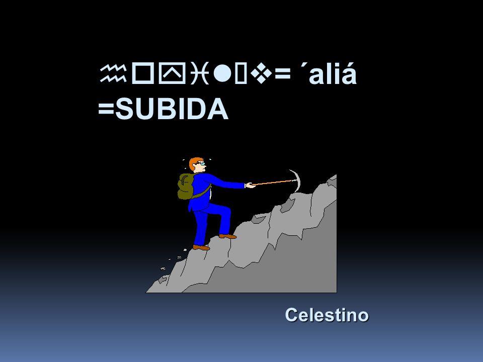 hoyilÏv= ´aliá =SUBIDA Celestino Celestino