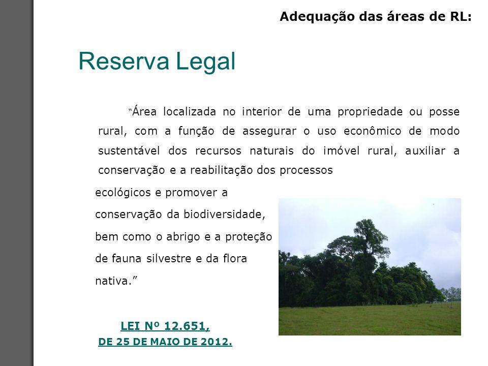 """Reserva Legal """" Área localizada no interior de uma propriedade ou posse rural, com a função de assegurar o uso econômico de modo sustentável dos recur"""