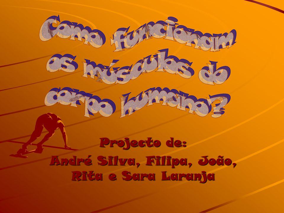 Projecto de: André Silva, Filipa, João, Rita e Sara Laranja