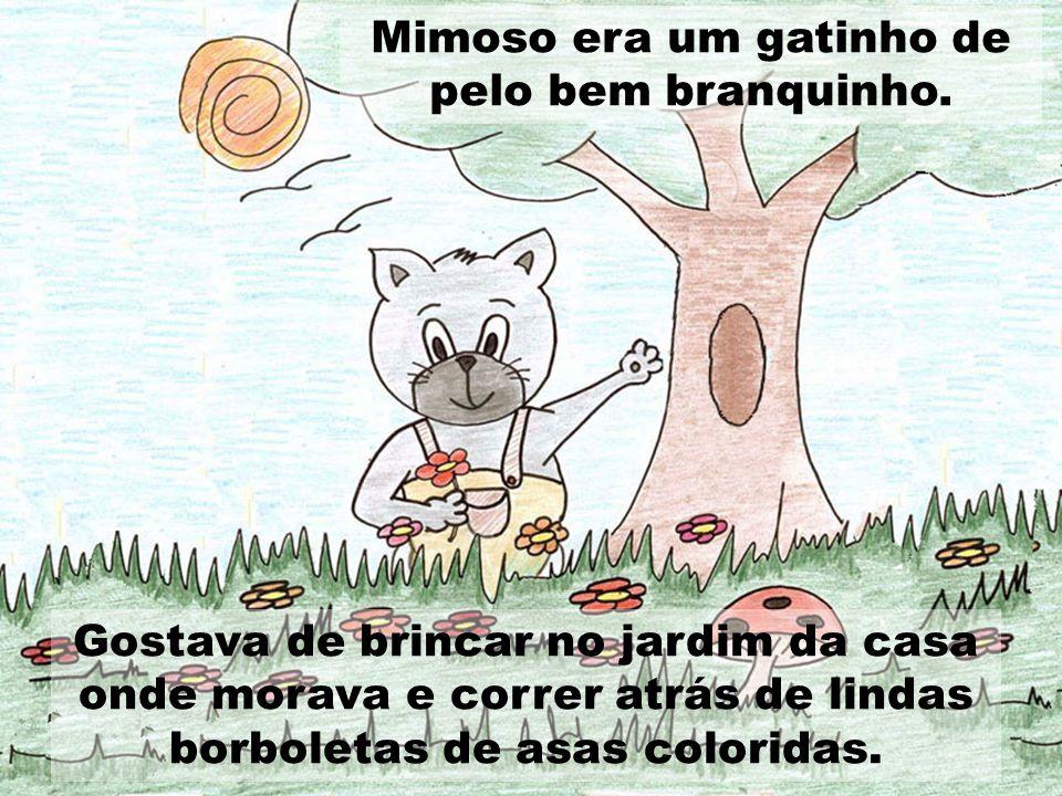 Gostava de brincar no jardim da casa onde morava e correr atrás de lindas borboletas de asas coloridas. Mimoso era um gatinho de pelo bem branquinho.