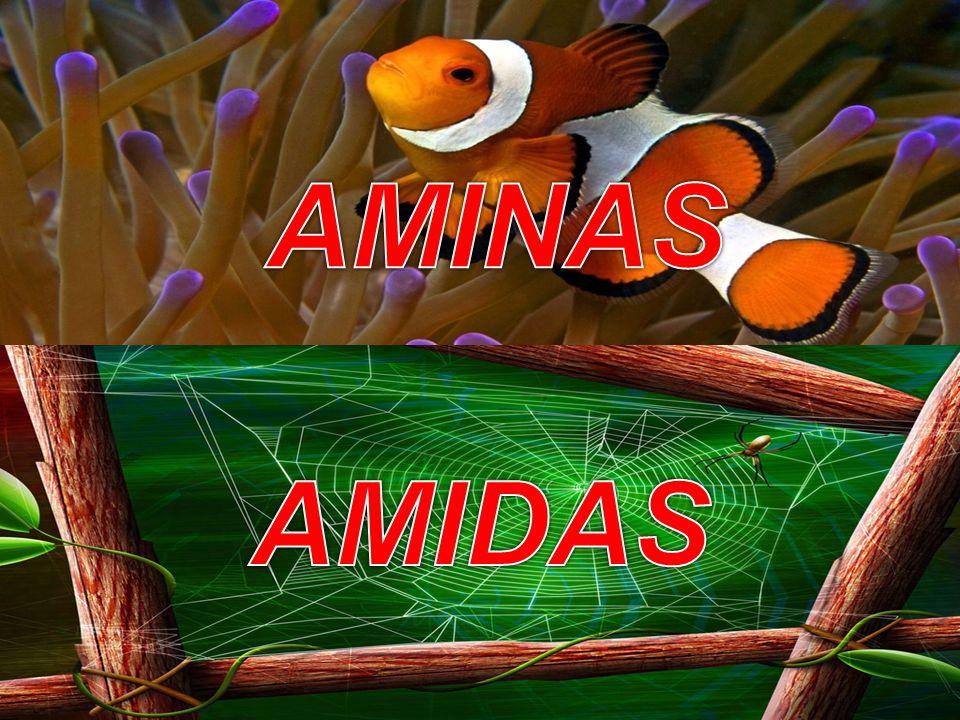 QUÍMICA FUNÇÕES ORGÂNICAS AMINAS E AMIDAS