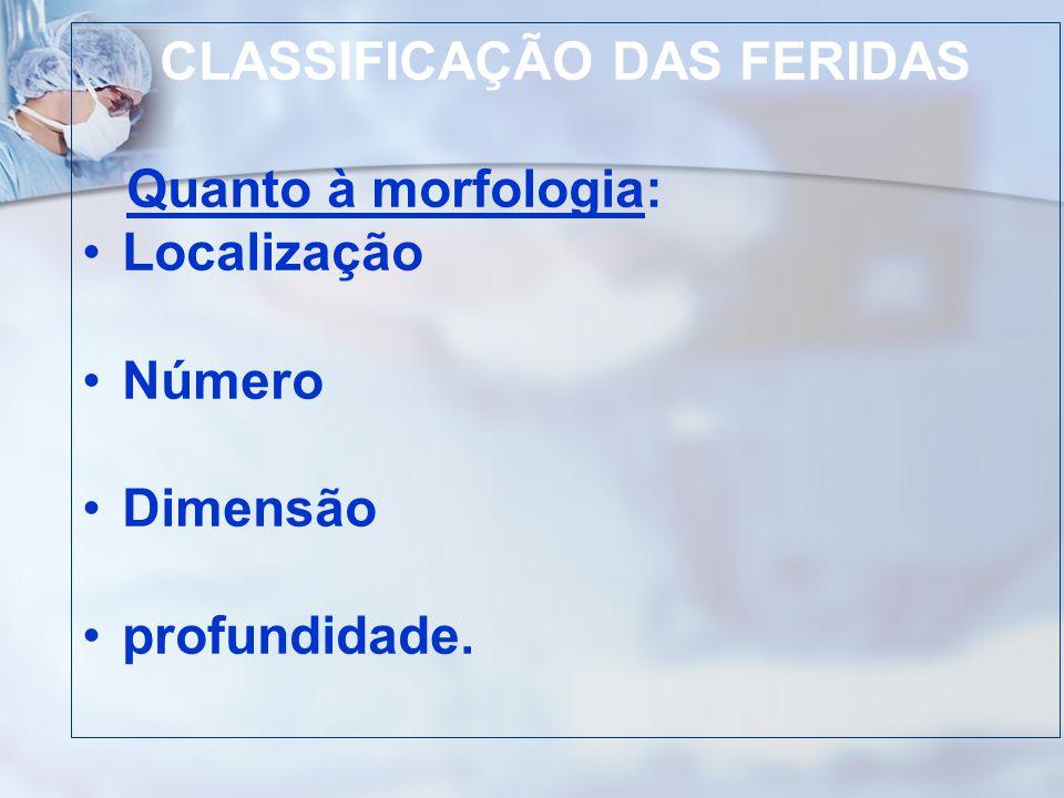 CLASSIFICAÇÃO DAS FERIDAS Quanto à morfologia: Localização Número Dimensão profundidade.