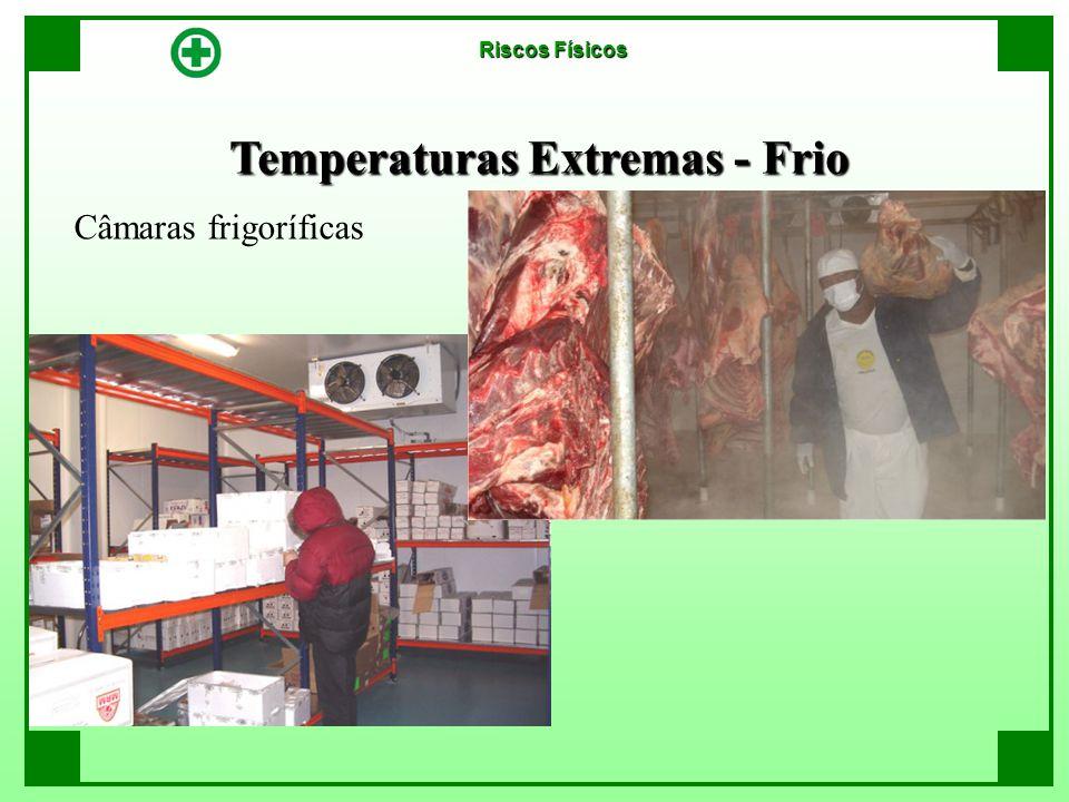 Temperaturas Extremas - Frio Riscos Físicos Câmaras frigoríficas