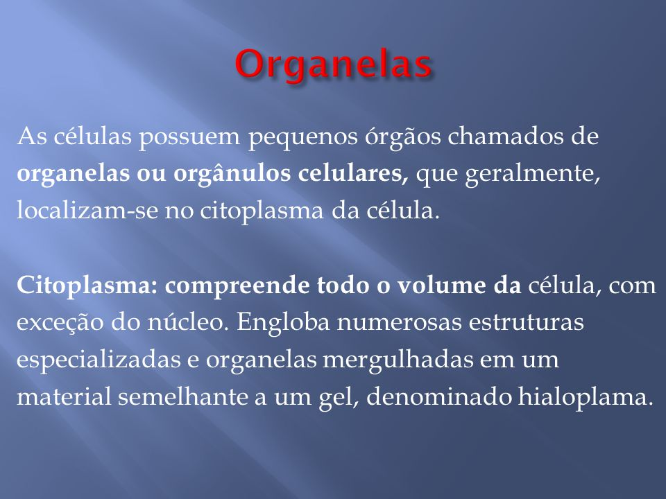 As células possuem pequenos órgãos chamados de organelas ou orgânulos celulares, que geralmente, localizam-se no citoplasma da célula.