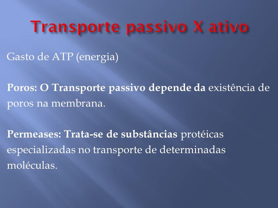 Gasto de ATP (energia) Poros: O Transporte passivo depende da existência de poros na membrana.
