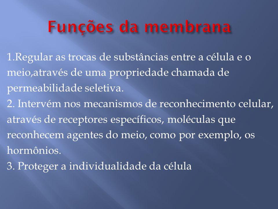 1.Regular as trocas de substâncias entre a célula e o meio,através de uma propriedade chamada de permeabilidade seletiva.