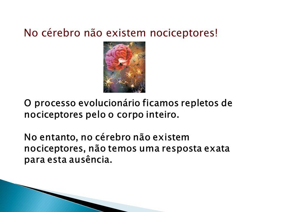 No cérebro não existem nociceptores! O processo evolucionário ficamos repletos de nociceptores pelo o corpo inteiro. No entanto, no cérebro não existe