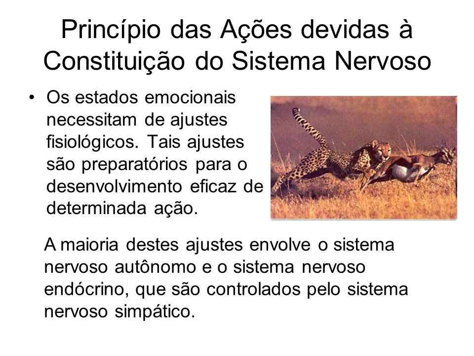 Princípio das Ações devidas à Constituição do Sistema Nervoso Os estados emocionais necessitam de ajustes fisiológicos. Tais ajustes são preparatórios