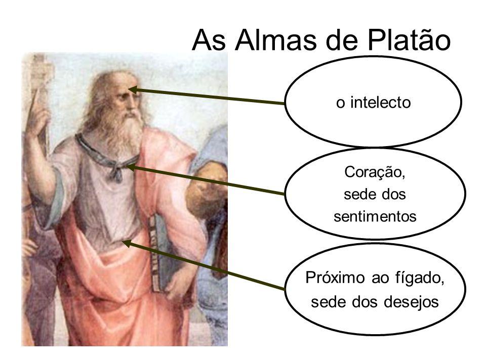 As Almas de Platão Coração, sede dos sentimentos Próximo ao fígado, sede dos desejos o intelecto