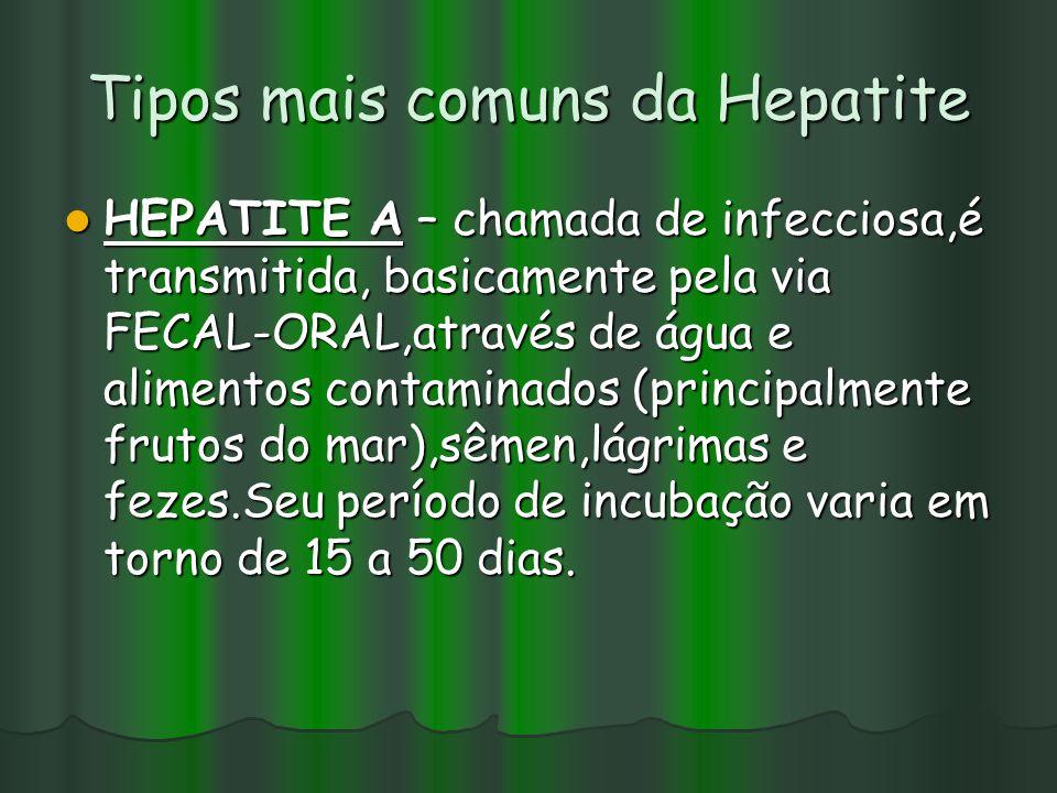 Tipos mais comuns da Hepatite HEPATITE A – chamada de infecciosa,é transmitida, basicamente pela via FECAL-ORAL,através de água e alimentos contaminados (principalmente frutos do mar),sêmen,lágrimas e fezes.Seu período de incubação varia em torno de 15 a 50 dias.