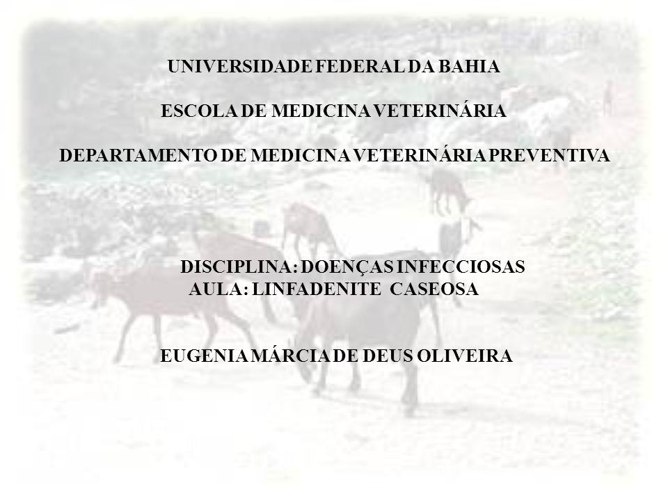 UNIVERSIDADE FEDERAL DA BAHIA ESCOLA DE MEDICINA VETERINÁRIA DEPARTAMENTO DE MEDICINA VETERINÁRIA PREVENTIVA DISCIPLINA: DOENÇAS INFECCIOSAS AULA: LIN