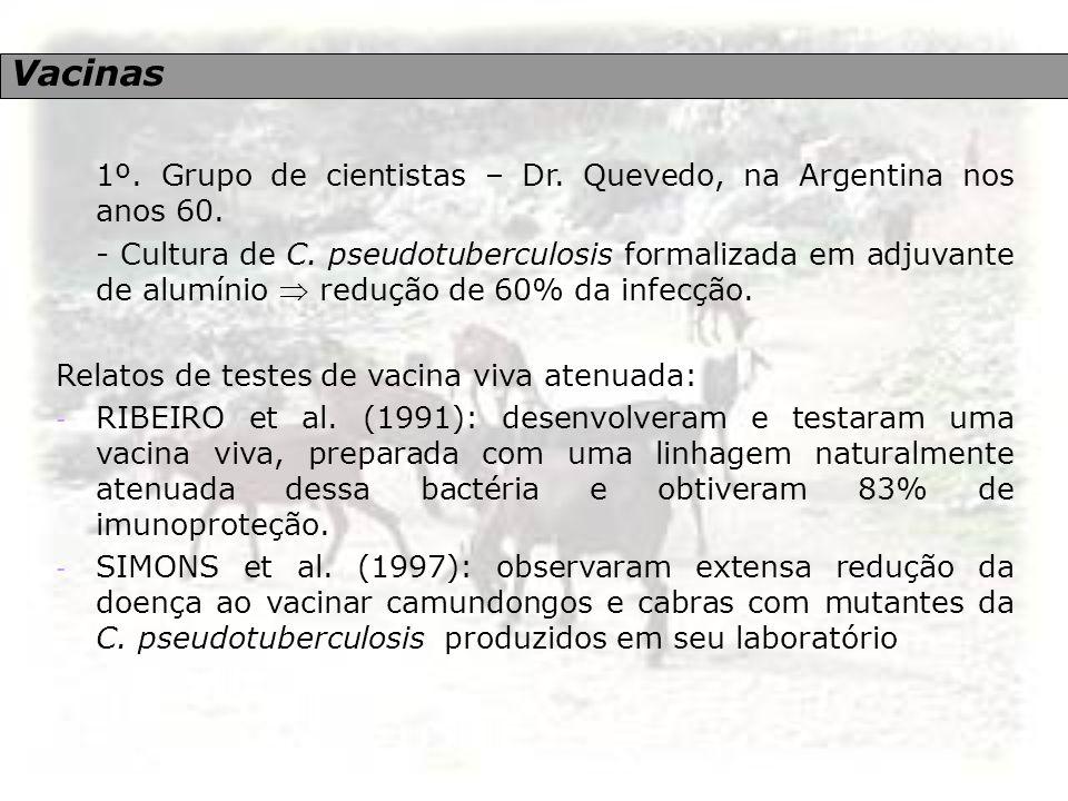Vacinas 1º. Grupo de cientistas – Dr. Quevedo, na Argentina nos anos 60. - Cultura de C. pseudotuberculosis formalizada em adjuvante de alumínio  red