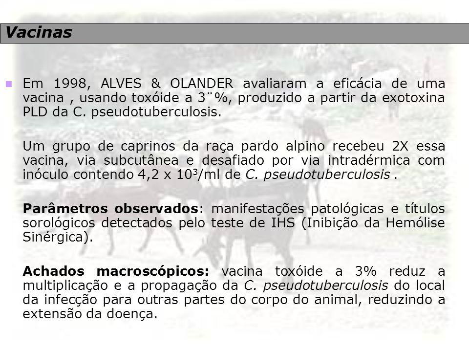 Vacinas Em 1998, ALVES & OLANDER avaliaram a eficácia de uma vacina, usando toxóide a 3¨%, produzido a partir da exotoxina PLD da C. pseudotuberculosi